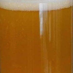 beer-crop